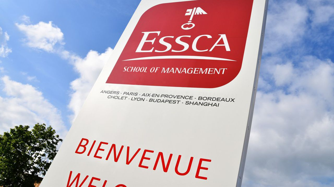 En dehors d'Angers, le groupe compte cinq autres campus enFrance et deux à l'étranger.