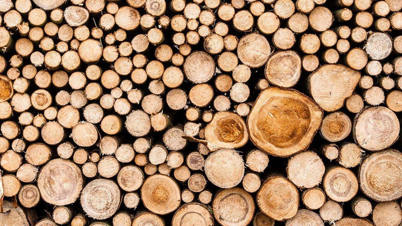 La production de chaleur renouvelable via la biomasse, à partir principalement de la combustion de bois, a été multipliée par huit entre2009 et2019.