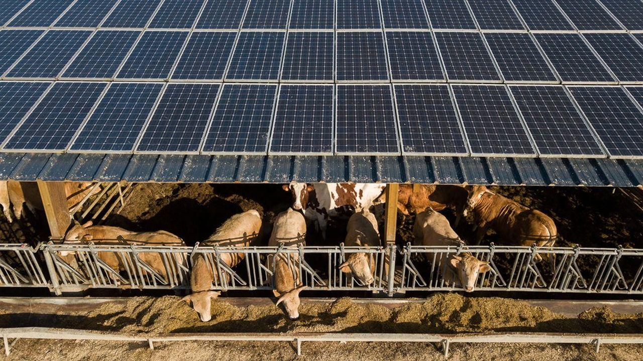 L'objectif du contrat est notammentd'accompagner le développement de filières d'avenir et des énergies renouvelables (méthanisation, fermes solaires…).