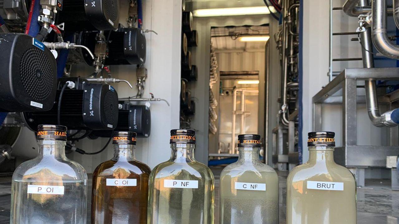 La PME Nereus est capable de tirer de l'eau d'effluents de rhum.