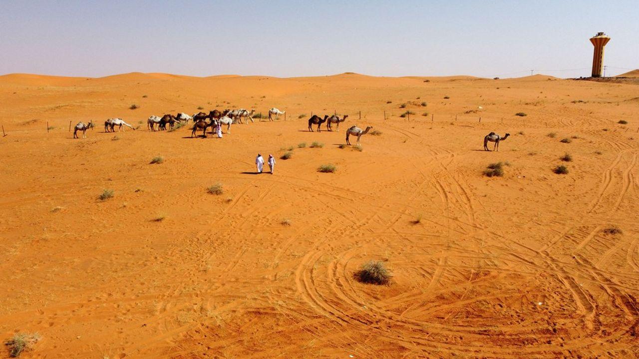 Des Bédouins dans le désert d'Al Nufud Al Kabir, dans le nord de l'Arabie saoudite, juillet2021.