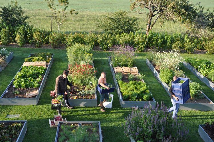 «Mettre les mains dans la terre ça fait prendre conscience aux gars de la cuisine de la fragilité des produits», estime Sébastien Bras qui s'approvisionne en plantes aromatiques dans ses jardins.