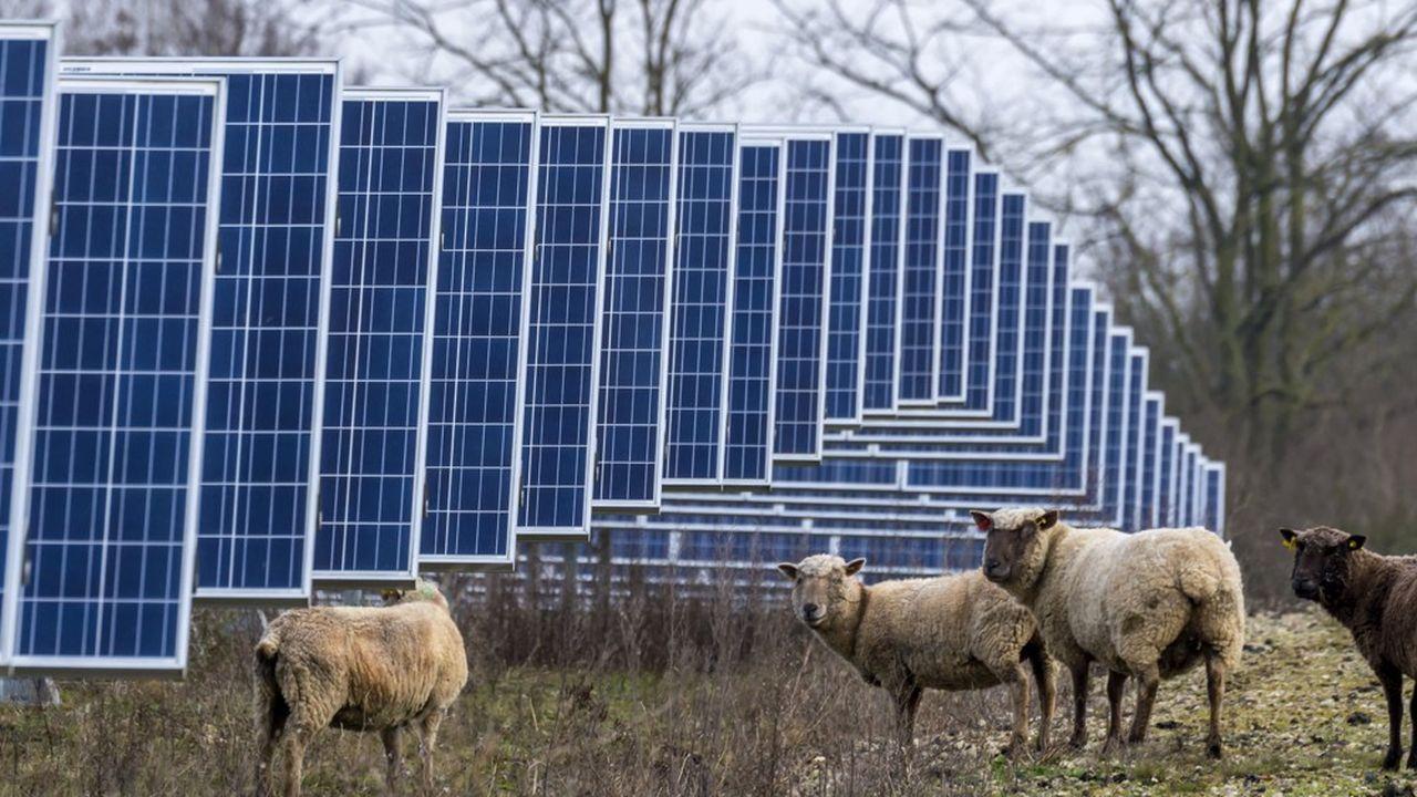 La commune de Marcoussis (Essonne), qui va accueillir la plus grande ferme photovoltaïque francilienne, veut aussi se doter de bâtiments modèles.