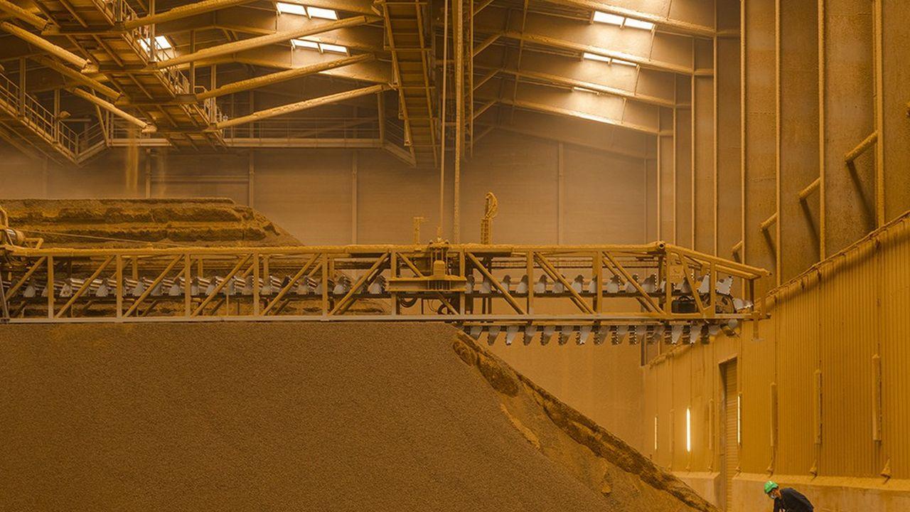 Contrôle des tourteaux de colza ans l'usine Saipol du Mériot à Nogent-sur-Seine (groupe Avril).