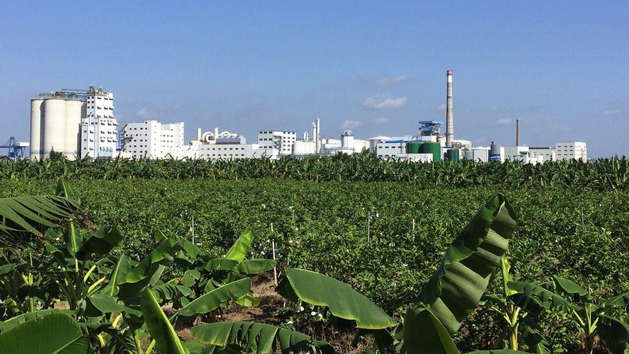 Tereos, deuxième sucrier mondial, cherche à réduire son endettement en cédant des activités, dont l'usine de Dongguan, près de Canton.