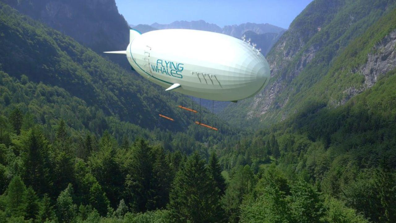 Transition énergétique : les paris osés d'Air Liquide